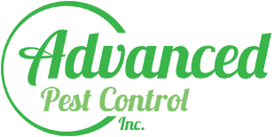 Welcome to Advanced Pest Control
